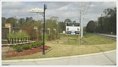 Central Village Lakes Baton Rouge Real Estate